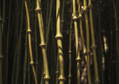 Bamboo 96