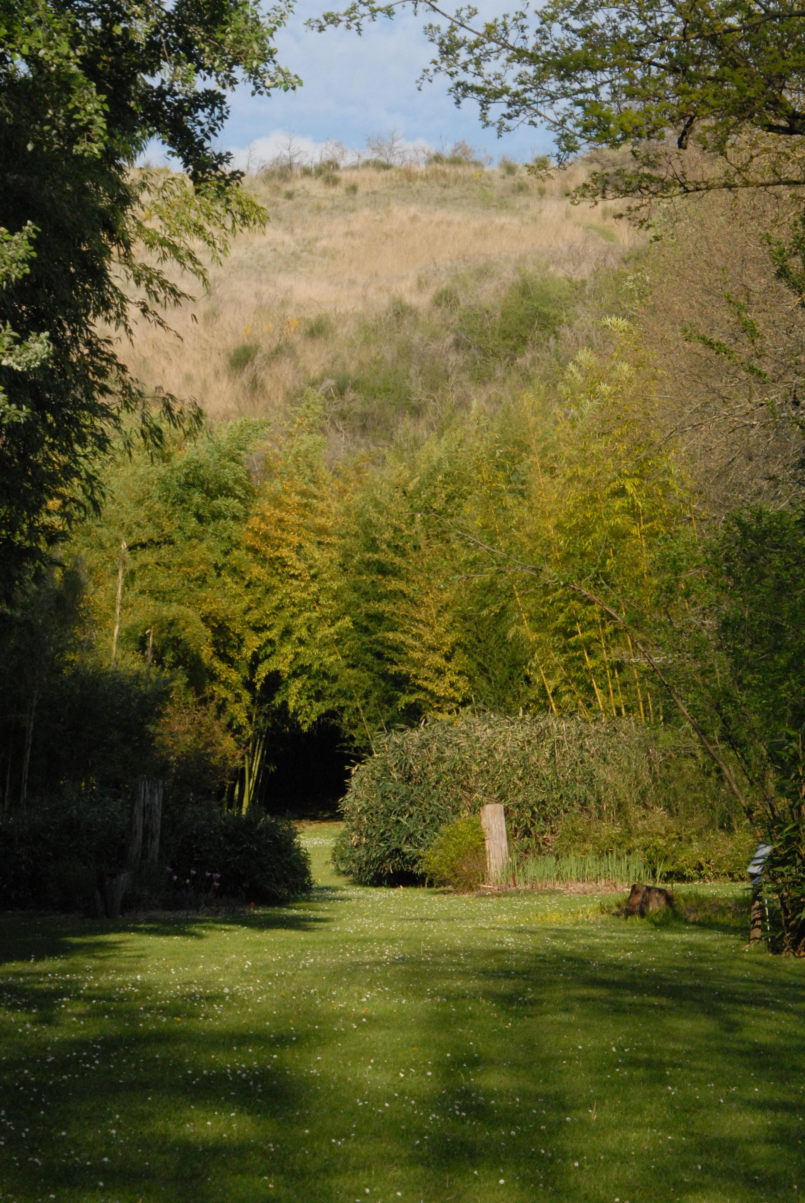 Parc aux bambous labellis jardin remarquable depuis 2006 for Jardin remarquable 2015